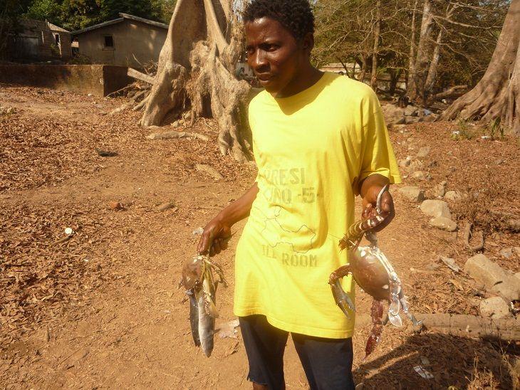 ギニア海産物情報